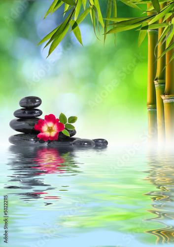 Keuken foto achterwand Spa Pietre Zen, rosa e bambù in acqua