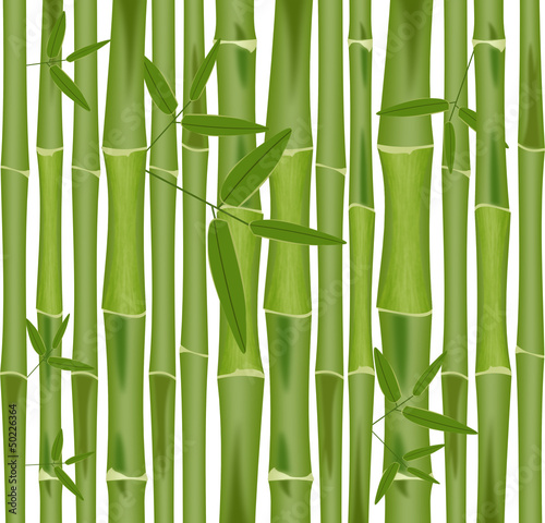 Bambus Rollo Digitaldruck Seite 6 Mit Eigenem Motiv