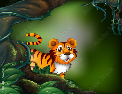 La pose en embrasure Forets enfants A rainforest with a tiger