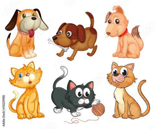 Door stickers Cats Lovable pets