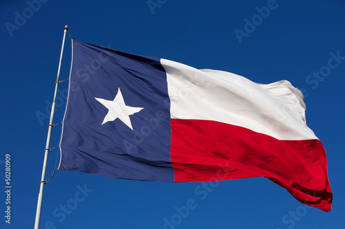 Fotografie, Obraz  State Flag of Texas