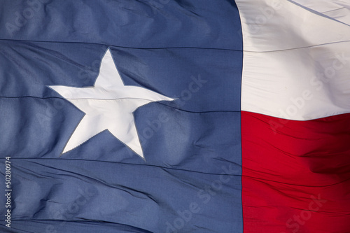 Poster Texas Flag of the State of Texas