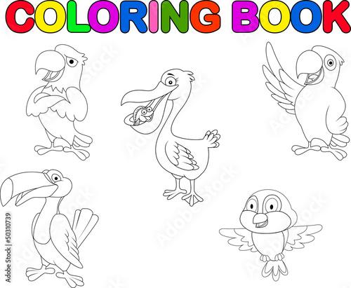 Bird Collection Coloring Book