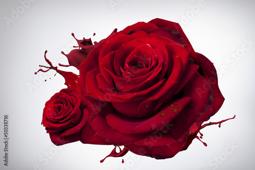 Fototapeta róża 4 obraz