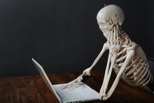 Skelett Am Computer