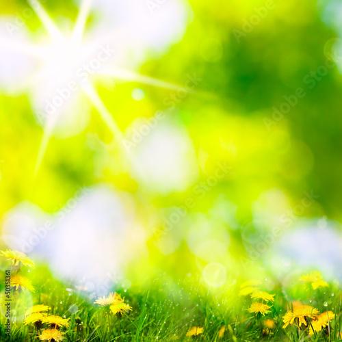 Poster Jaune spring background