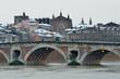 La ville de Toulouse en hiver