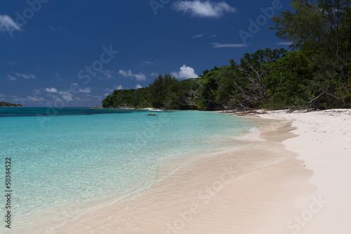 Foto op Canvas Tropical strand Plage de l'île Curieuse aux Seychelles