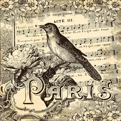 Paris vintage - 50372601