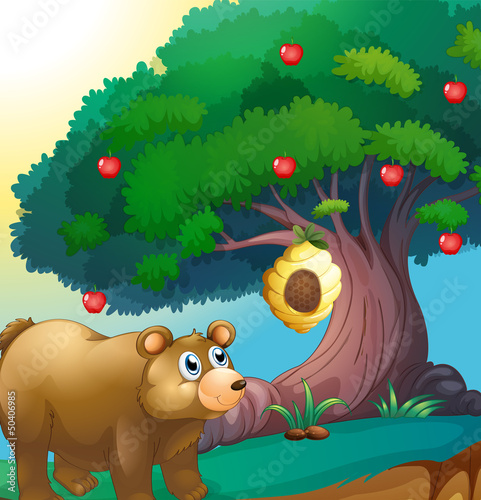 Wall Murals Bears A bear looking at the beehive hanging in an apple tree