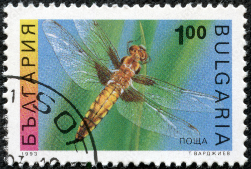 Poster  stamp shows the insect, Four-spotted Chaser