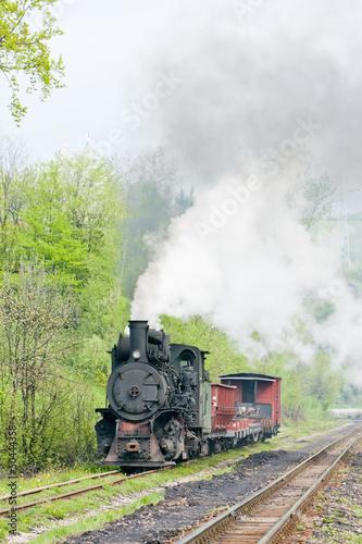 Fototapeta narrow gauge railway, Banovici, Bosnia and Hercegovina obraz na płótnie
