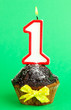 canvas print picture - Birthday cupcake with chocolate frosting on green background