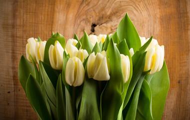 fototapeta biały bukiet tulipanów