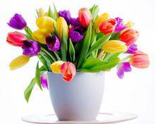 Spring Flowers. Colorful Fresh Spring Tulips Flowers In Vase