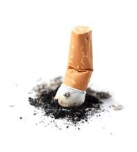Mégot De Cigarette écrassé