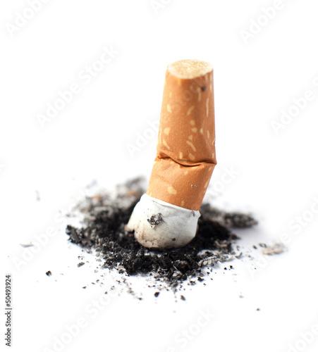 Obraz na plátně mégot de cigarette écrassé