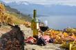 Wine on the terrace vineyard in Lavaux region, Switzerland