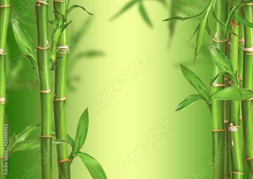 spa-martwa-natura-z-bambusa-kapusty-wolne-miejsce-na-tekst