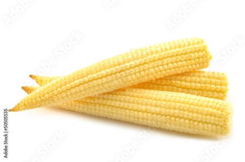 Baby corn on a white background Billede på lærred
