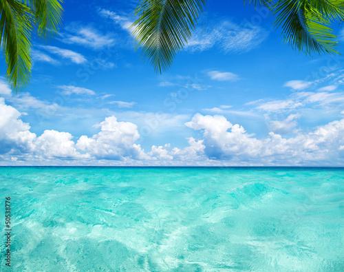 morze-karaibskie