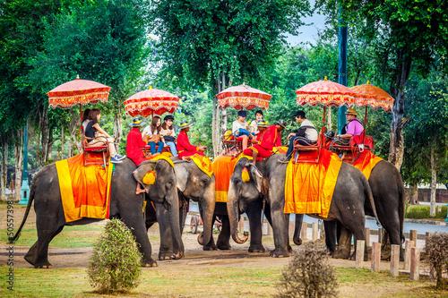 Fototapeta orientalna   orientalna-wycieczka-na-sloniach