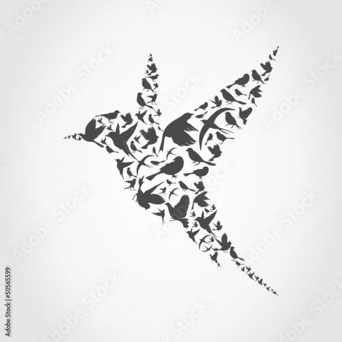 Birdie9