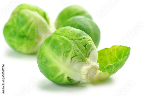 Poster Brussel Brussels sprouts