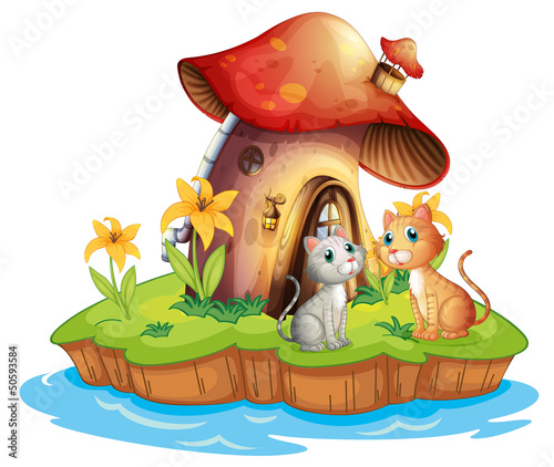 Foto auf Leinwand Die magische Welt A mushroom house with two cats
