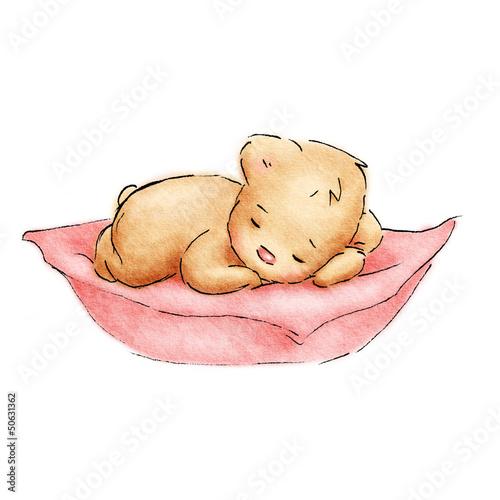 sleeping-baby-bear