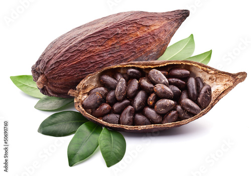Fotografía  Vaina de cacao