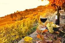 Glass Of Red Wine On The Terrace Vineyard In Lavaux Region, Swit