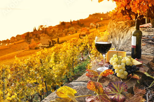 Wall Murals Vineyard Glass of red wine on the terrace vineyard in Lavaux region, Swit