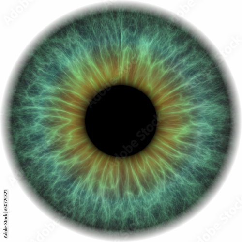 Leinwand Poster Pupille