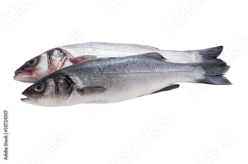 Poster Fish raw seabass