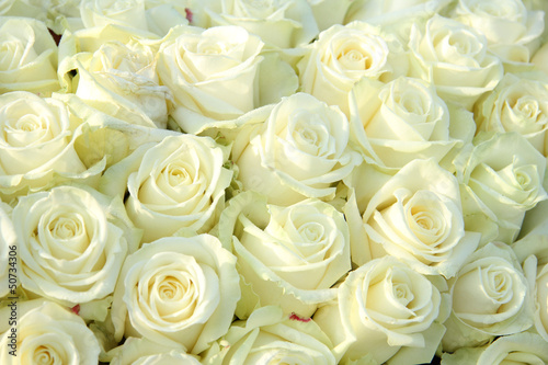 Group of white roses, wedding decorations - 50734306