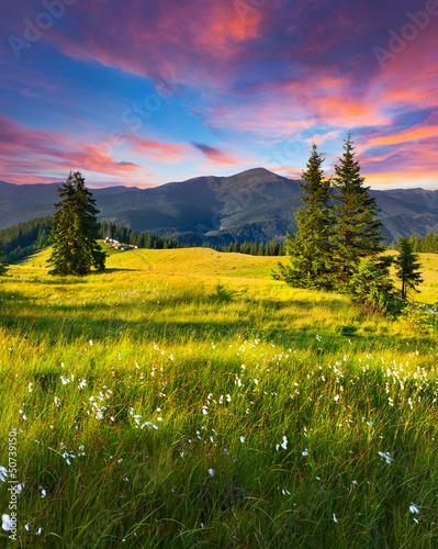 piekny-letni-krajobraz-w-gorach-z
