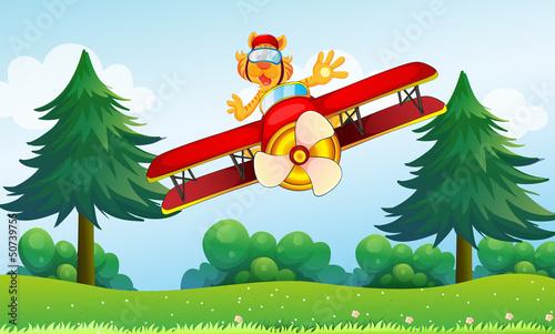 Papiers peints Avion, ballon A boastful tiger riding in a plane