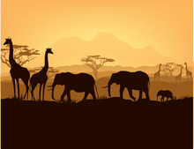 African Animals Silhouettes In...