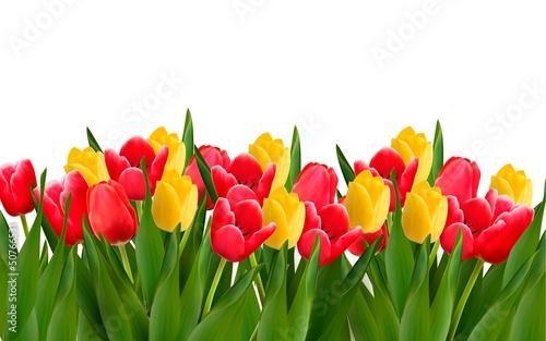 tlo-wakacje-z-kolorowych-kwiatow-ilustracji-wektorowych