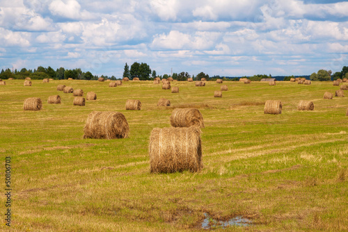 Wall Murals Melon Round bale of straw in the meadow