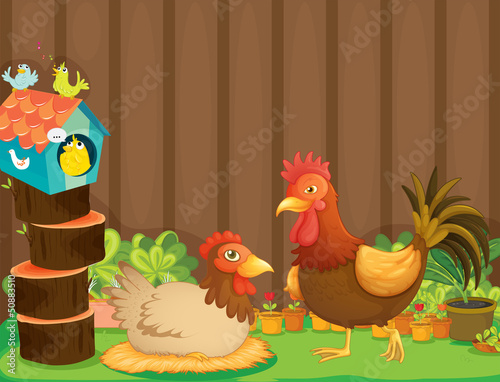 Photo sur Aluminium Ferme A hen and a rooster beside the bird house