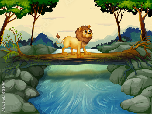 Canvas Prints River, lake A lion crossing the river