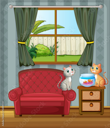 Poster de jardin Chats The two cats watching the aquarium