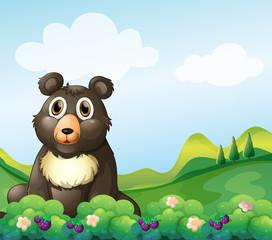 Veliki medvjed koji sjedi u vrtu