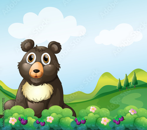 Photo sur Toile Ours A big bear sitting in the garden