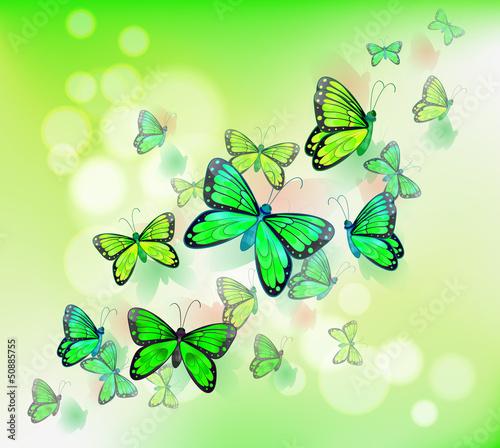 Tuinposter Vlinders A group of green butterflies