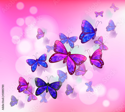 Deurstickers Vlinders A pink stationery with a group of butterflies