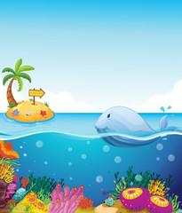 Fototapeta na wymiar A fish looking at the island with an arrow