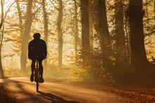 Silhouette Of A Biker In Fall